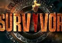 survivor-2019