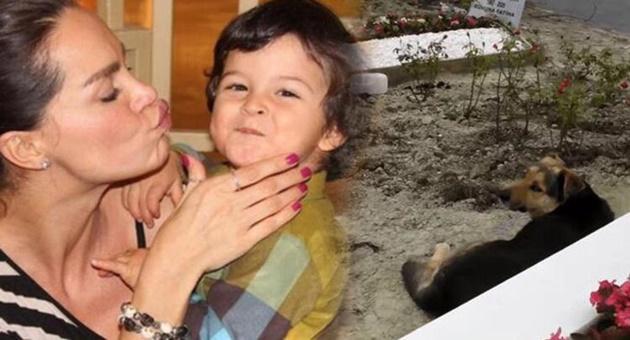 Photo of Ebru Şallı'nın oğlu Pars'ın mezarındaki ayrıntı dikkat çekti!