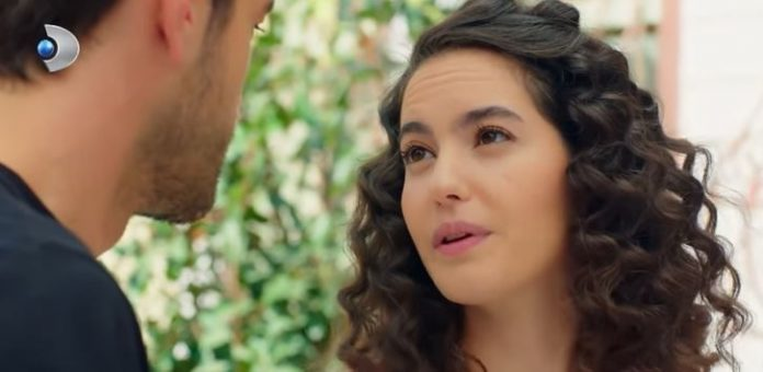 Sizinki aşkta bizimki taş mı? Çatı Katı Aşk dizisinde romantizm rüzgarı