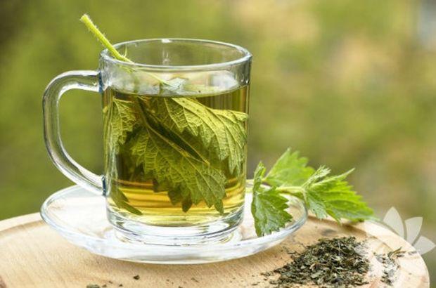 maydanoz çayı ile ilgili görsel sonucu